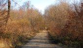 Trail On foot VIEUX-MOULIN - en forêt de Compiègne_23_la Grotte des Ramoneurs_le Mont Berny - Photo 24