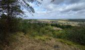 Randonnée Marche Viroinval - Nismes - Photo 8