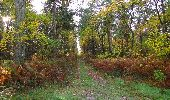 Randonnée Marche SAINT-JEAN-AUX-BOIS - en forêt de Compiègne_32_11_2019_les Tournantes de la Muette et sous la Tête Saint-Jean - Photo 99