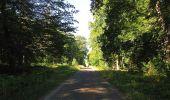 Trail Walk DAMPLEUX - en forêt de Retz_80_sur la Route Tortue et la Route Droite - Photo 212