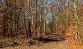 Trail Walk PIERREFONDS - en forêt de Compiègne_24_Tournantes sur le Voliard et sur la Fortelle_chaussée Brunehaut - Photo 87