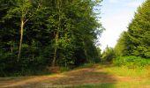 Randonnée Marche LACROIX-SAINT-OUEN - en forêt de Compiègne_35_la Croix Saint-Sauveur_le Ru du Goderu - Photo 89