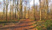 Trail Walk SAINT-JEAN-AUX-BOIS - en forêt de Compiègne_33_12_2019_les Tournantes de l'étang Saint-Jean et des Prés Saint-Jean - Photo 68