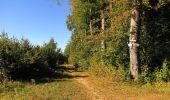 Trail Walk DAMPLEUX - en forêt de Retz_80_sur la Route Tortue et la Route Droite - Photo 157