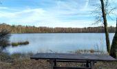 Trail Walk ECROMAGNY - 16-02-20 Ecromagny : circuit Epoissets + étangs de la Chaussée - Photo 8