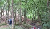 Randonnée Marche Havelange - Failon - Somal - Photo 3