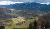 Randonnée Marche LE MENIL - Grande boucle au départ des chalets de la Feigne sur de l'Eau - Photo 4
