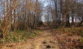 Trail On foot VIEUX-MOULIN - en forêt de Compiègne_23_la Grotte des Ramoneurs_le Mont Berny - Photo 16