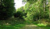Randonnée Marche HARAMONT - en forêt de Retz_79_08_2019_vers Taillefontaine et Retheuil par les lisières - Photo 80