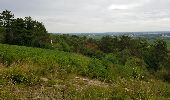 Trail Walk MONTHELIE - De Monthelie à Pommard - Photo 11