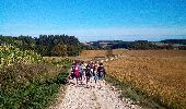 Randonnée Marche FERRIERES-LES-BOIS - Ferrières les bois - Photo 12