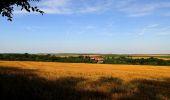 Randonnée Marche HARAMONT - en forêt de Retz_79_08_2019_vers Taillefontaine et Retheuil par les lisières - Photo 84