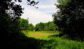 Randonnée Marche COYOLLES - en forêt de Retz_78_les rayons du Rond Capitaine - Photo 35