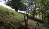 Randonnée Marche SENTHEIM - Sentheim Rossberg - Photo 17