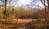 Trail On foot VIEUX-MOULIN - en forêt de Compiègne_23_la Grotte des Ramoneurs_le Mont Berny - Photo 98