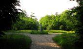 Randonnée Marche COYOLLES - en forêt de Retz_78_les rayons du Rond Capitaine - Photo 101