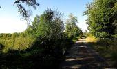 Trail Walk DAMPLEUX - en forêt de Retz_80_sur la Route Tortue et la Route Droite - Photo 244
