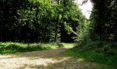 Randonnée Marche HARAMONT - en forêt de Retz_79_08_2019_vers Taillefontaine et Retheuil par les lisières - Photo 77