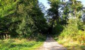 Trail Walk DAMPLEUX - en forêt de Retz_80_sur la Route Tortue et la Route Droite - Photo 99