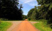 Randonnée Marche HARAMONT - en forêt de Retz_79_08_2019_vers Taillefontaine et Retheuil par les lisières - Photo 108