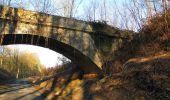Trail Walk RETHEUIL - en forêt de Retz_76_dans les forêts de Retz et de Compiègne - Photo 29