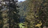 Trail Walk METZERAL - Steinabruck - Le Hohneck et ses 3 lacs Fischboedle, Altenweiher et Schiessrothried - Photo 24