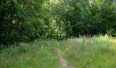 Randonnée Marche SAINT-JEAN-AUX-BOIS - en forêt de Compiègne_2_ruines gallo-romaines de Champlieu_les Petits Monts - Photo 128