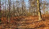Trail On foot VIEUX-MOULIN - en forêt de Compiègne_23_la Grotte des Ramoneurs_le Mont Berny - Photo 14