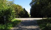 Trail Walk DAMPLEUX - en forêt de Retz_80_sur la Route Tortue et la Route Droite - Photo 285