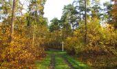 Randonnée Marche SAINT-JEAN-AUX-BOIS - en forêt de Compiègne_19_le Puits d'Antin_les Mares St-Louis_La Muette - Photo 57