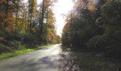 Randonnée Marche SAINT-JEAN-AUX-BOIS - en forêt de Compiègne_32_11_2019_les Tournantes de la Muette et sous la Tête Saint-Jean - Photo 187