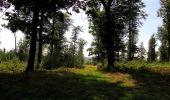 Randonnée Marche HARAMONT - en forêt de Retz_79_08_2019_vers Taillefontaine et Retheuil par les lisières - Photo 121
