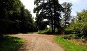 Randonnée Marche HARAMONT - en forêt de Retz_79_08_2019_vers Taillefontaine et Retheuil par les lisières - Photo 117