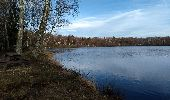 Trail Walk ECROMAGNY - 16-02-20 Ecromagny : circuit Epoissets + étangs de la Chaussée - Photo 5