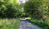 Trail Walk DAMPLEUX - en forêt de Retz_80_sur la Route Tortue et la Route Droite - Photo 249