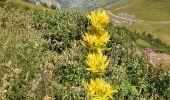Randonnée Marche VILLAR-D'ARENE - traversée du Col d'Arsine - Photo 17