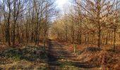 Trail Walk PIERREFONDS - en forêt de Compiègne_24_Tournantes sur le Voliard et sur la Fortelle_chaussée Brunehaut - Photo 9