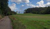 Trail Walk Andenne - sclaigneaux 1 - Photo 11