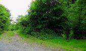 Randonnée Marche COYOLLES - en forêt de Retz_78_les rayons du Rond Capitaine - Photo 5