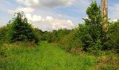 Randonnée Marche COYOLLES - en forêt de Retz_78_les rayons du Rond Capitaine - Photo 153