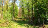Randonnée A pied VILLERS-COTTERETS - le GR11A  dans la Forêt de Retz  - Photo 94