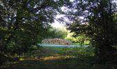 Trail Walk DAMPLEUX - en forêt de Retz_80_sur la Route Tortue et la Route Droite - Photo 38