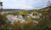 Trail Walk Viroinval - De Nismes à Petigny par le Tienne du Lion - Photo 11