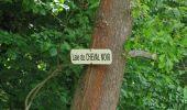 Randonnée Marche COYOLLES - en forêt de Retz_78_les rayons du Rond Capitaine - Photo 40