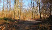 Trail Walk PIERREFONDS - en forêt de Compiègne_24_Tournantes sur le Voliard et sur la Fortelle_chaussée Brunehaut - Photo 151