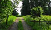 Randonnée Marche COYOLLES - en forêt de Retz_78_les rayons du Rond Capitaine - Photo 107