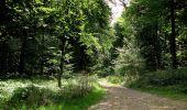Randonnée Marche HARAMONT - en forêt de Retz_79_08_2019_vers Taillefontaine et Retheuil par les lisières - Photo 76
