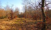 Trail Walk PIERREFONDS - en forêt de Compiègne_24_Tournantes sur le Voliard et sur la Fortelle_chaussée Brunehaut - Photo 5