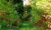 Randonnée Marche SAINT-JEAN-AUX-BOIS - en forêt de Compiègne_21_la Muette_les Clavières_la Brévière - Photo 64