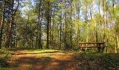 Randonnée Marche LONGPONT - en forêt de Retz_77_Longpont_Puiseux en Retz_AR - Photo 24